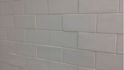 Picture for category Tile & Grout Cleaning